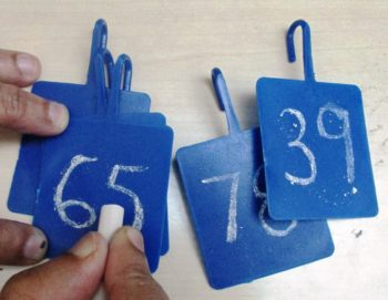Empty Number Card (Set of 5)
